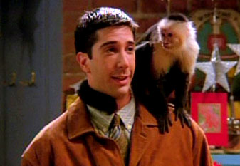 Friends monkey